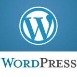 Размер шрифта в Ворд Пресс